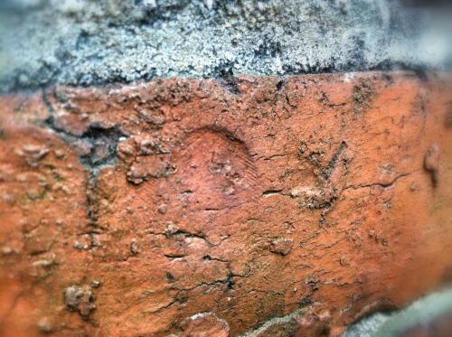 thumbprint closeup