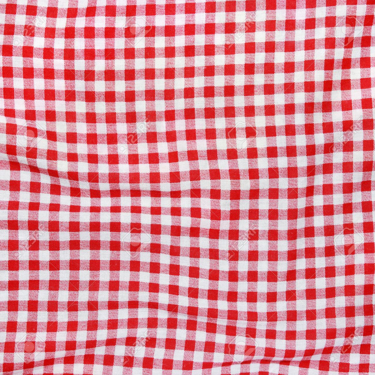 Picnic Blanket: Hudson Bay Blanket