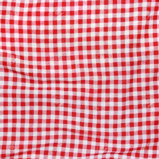 Texture of a red and white checkered picnic blanket. Red linen c